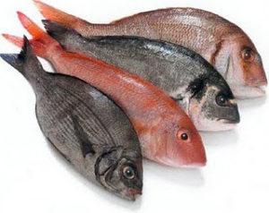 Waspadai Bahaya Mengonsumsi Ikan Nila