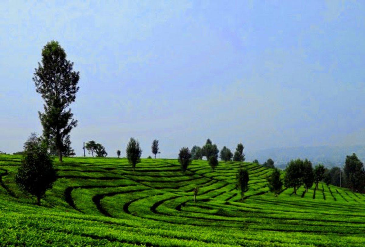 Beberapa Tempat Wisata Di Bandung