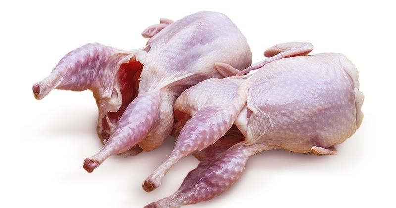 Manfaat Mengonsumsi Daging Burung Puyuh Untuk Kesehatan