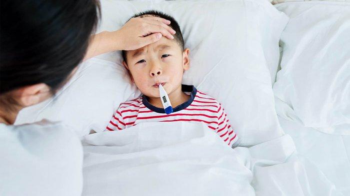Hati-Hati, Penyakit Tipes Dapat Menular